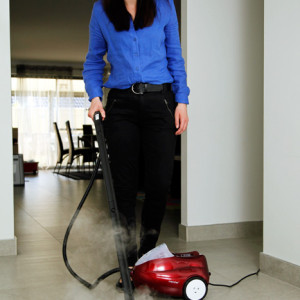 MONSTER COMPACT STEAM CLEANER- SC60R